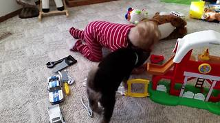 A Kid And A Dog Try To Catch A Laser Beam - Video