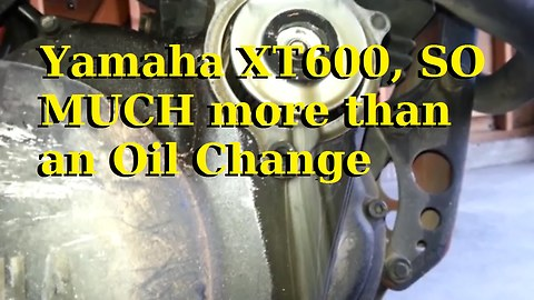 Yamaha XT600 SO MUCH more than an Oil Change