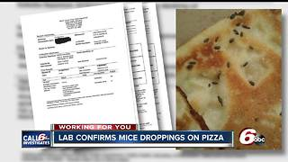 Indy Little Ceasars where mice droppings found in pizza had rodent issues in the past - Video