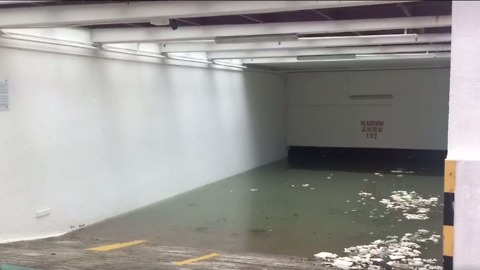 Typhoon Hato Swamps Roads and Buildings in Hong Kong