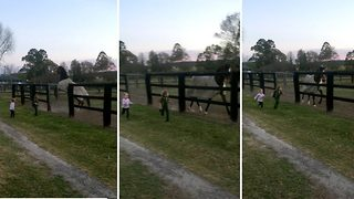 Horsing around – Little race horse loves sprinting with girls  - Video