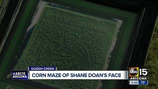Arizona corn maze looks like Shane Doan - Video