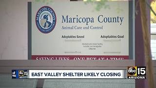 East Valley animal shelter is likely to close - Video
