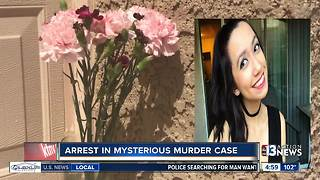 Arrest made in mysterious murder case - Video