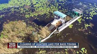 Overgrown vegetation removed from Hunters Lake - Video