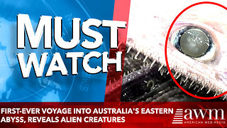 first-ever voyage into Australia's eastern abyss, reveals Alien Creatures - Video