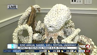 Sanibel Shell Festival underway for 82nd year