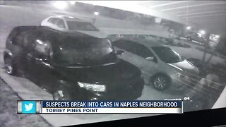 Suspects caught on camera breaking into cars in Naples neighborhood