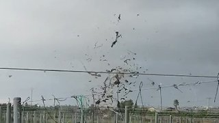 Waterspout Makes Land, Whips Branches and Cloth Into Air in Eastern Spain - Video