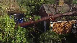 Drone Footage Shows Damage After Deadly Albany Storm - Video