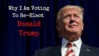 Why I Am Voting To Re-Elect Donald Trump
