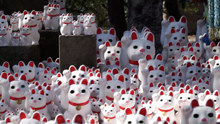 This Japanese Temple Features 1000 Lucky Cat Dolls - Video