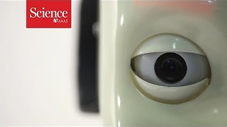 Why do we keep making robots that look like people? - Video