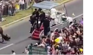 Pope Rushes to Help Policewoman Thrown From Horse During Parade - Video