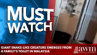 giant snake-like creature emerges from a family's TOILET in Malaysia