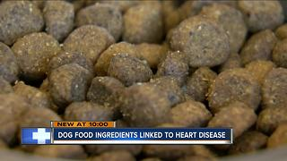 FDA: Certain dog food diets possibly linked to deadly heart disease
