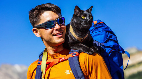 The Backpacking Cat That Travels The US With His Human