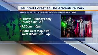 The Adventure Park:  Haunted Forest - Video