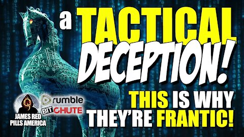 TACTICAL DECEPTION! THIS Is Why They're FRANTIC! Mclnerney, Vandersteel & Smith's EPIC Revelations!