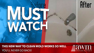New Mold Killing  Method Works Better Than Any Other - Video