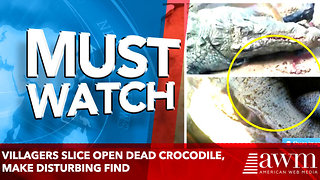 Villagers Slice open dead crocodile, make disturbing find - Video