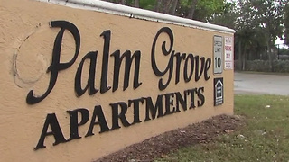 11-year-old shot while in a car in West Palm Beach - Video