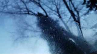 Ice Crystals Forming on a Windshield - Video