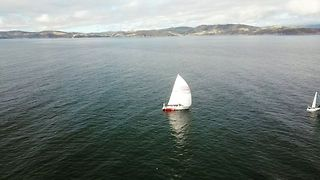 Sailboats Travel Into River Derwent in Sydney to Hobart Yacht Race - Video