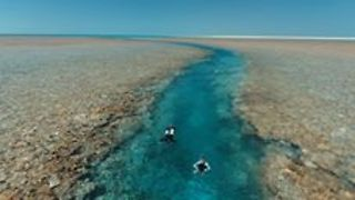 Diver's Paradise Unveiled in Pristine Western Australia - Video