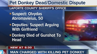 Man facing charges for killing donkey during domestic dispute - Video