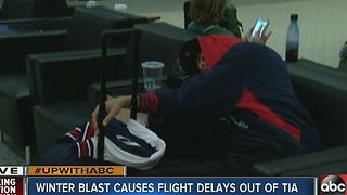 Arctic blast causes flight delays at TIA - Video