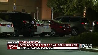 3-year-old boy dies after being left in hot car - Video