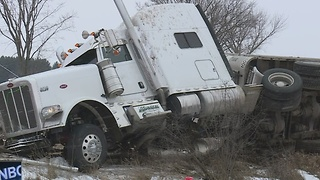 Semi-Truck Cattle Accident - Video