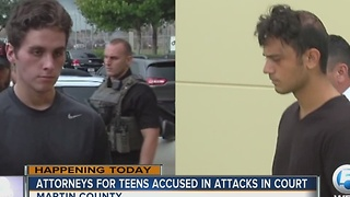 2 Martin County attack suspects due in court - Video
