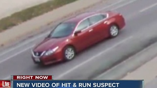Police issue urgent plea for help locating road rage murder suspect - Video