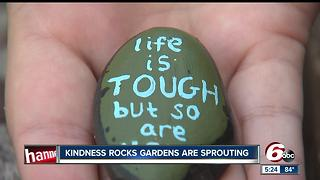 Kindess rocks gardens are sprouting - Video