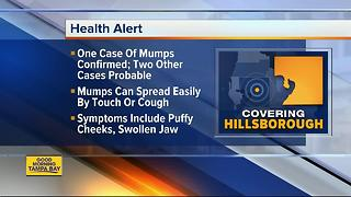 One case of mumps confirmed in Hillsborough County, 2 other probable cases identified - Video