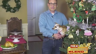 Tips for Stress-Free Holiday Travel with Pets 11/23/16 - Video
