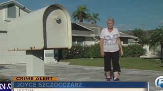 Thieves targeting mailboxes - Video