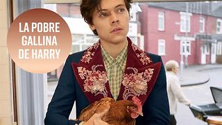 Los fans de Harry Styles, indignados con el spot de Gucci - Video