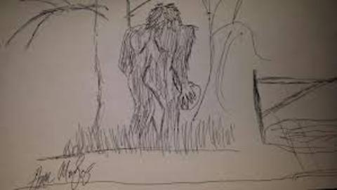"""Motorist Observes A Bigfoot Chasing A Deer With A """"Large Basketball Sized Rock"""""""