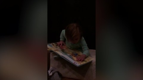 Adorable Little Girl Doesn't Want To Let Go Of The Book