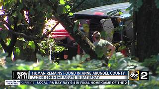 Human remains found along Md. Highway by Maryland State Police - Video