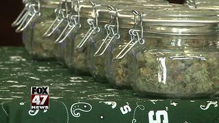 State proposing medical marijuana applicants have assets up to $500,000 to open up shop - Video