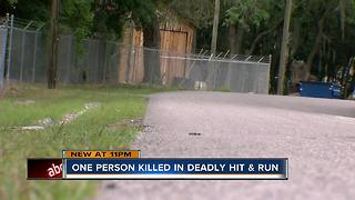 One person killed in hit and run accident