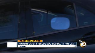 Woman, deputy rescue dog from hot car - Video