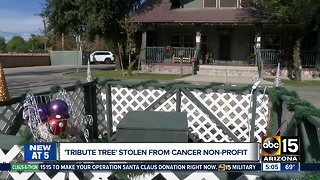 'Tribute tree' stolen from cancer non-profit - Video