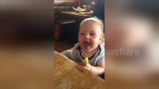 Baby eats lemon for the first time - Video