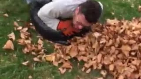 Dad demonstrates best possible way to bag leaves