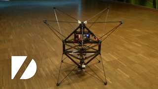 Insect Robot - Video